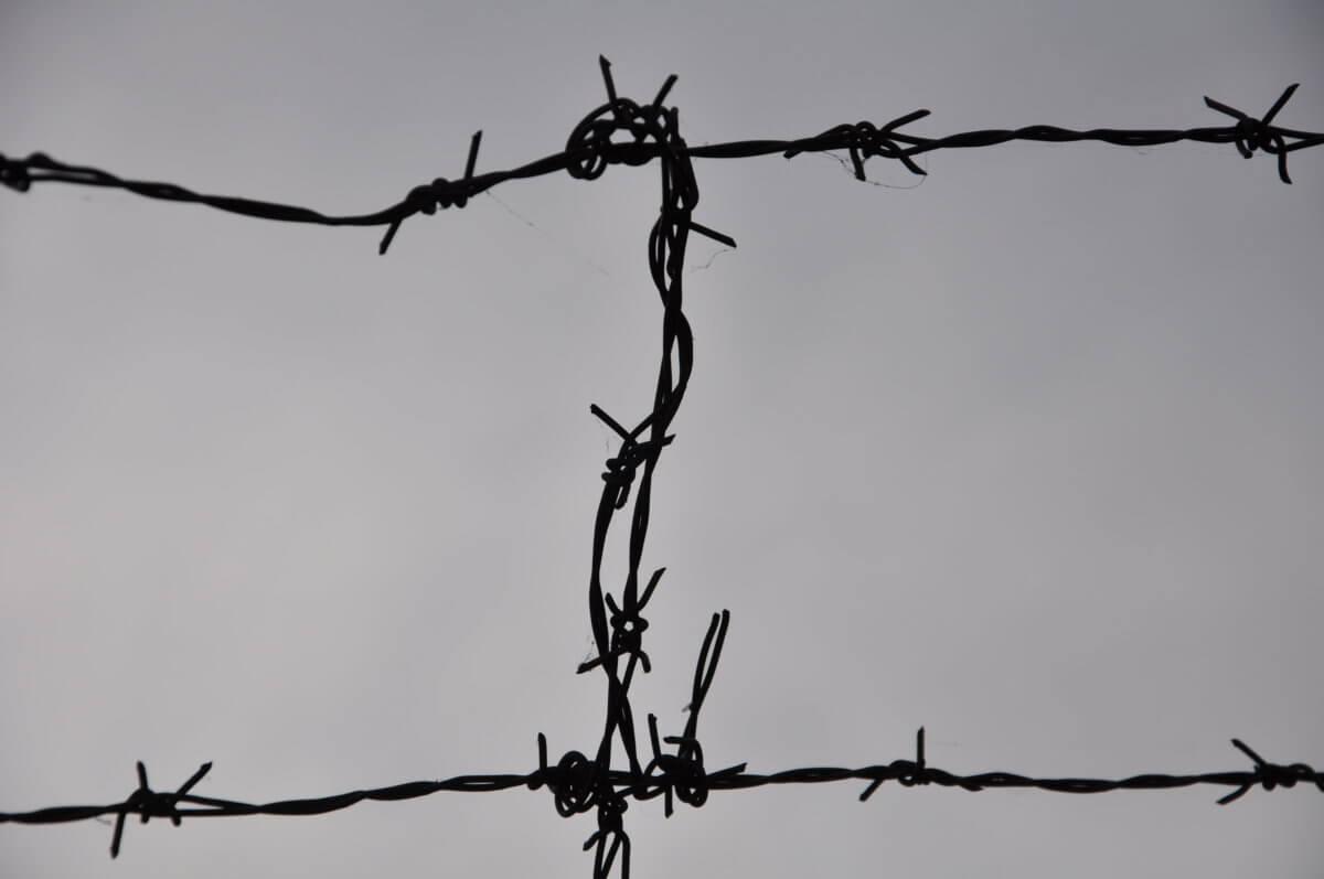 """O poezji, pisaniu i sztuce latania.   Z Jadwigą Graboś, autorką tomu poetyckiego """"Lekcje rozróżniania"""", rozmawia Rafał Rutkowski"""